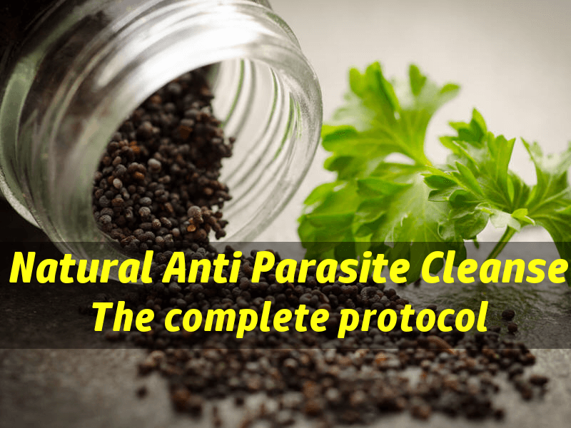 natural parasite cleanse